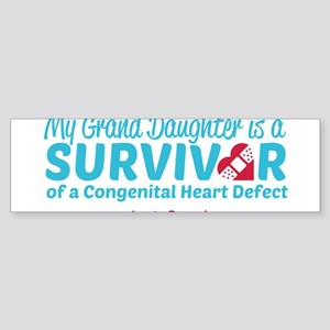 CHD Survivor - Grand Daughter Bumper Sticker